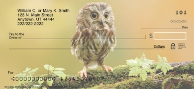 Click on Baby Owls  Personal Checks For More Details