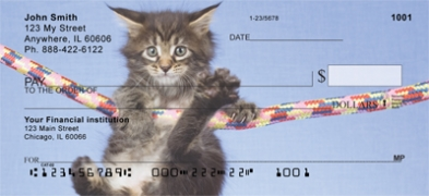 Click on Maine Coon Kittens  Personal Checks For More Details