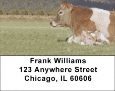 Click on Bonding Baby Calves Address Labels For More Details