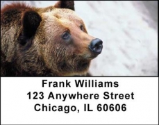 Click on Grizzly Bears Address Labels For More Details