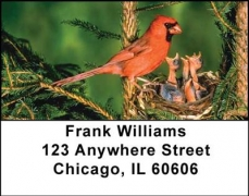 Click on Baby Birds Address Labels For More Details