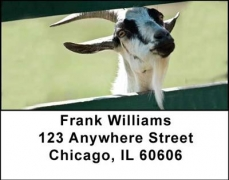 Click on Goats Address Labels For More Details