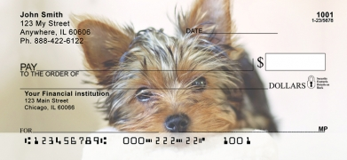 Click on Yorkies  Personal Checks For More Details