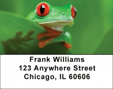 Click on More Tree Frogs Address Labels For More Details