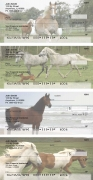 Click on Horse Personal Checks For More Details