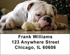 Click on Cute English Bulldog Address Labels For More Details
