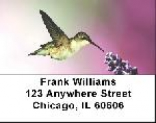 Click on More Hummingbird Address Labels For More Details