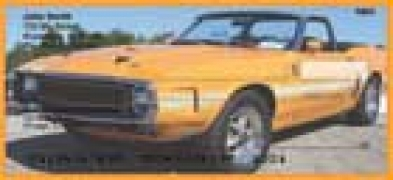 Click on Pony Cars - Car Personal Checks For More Details