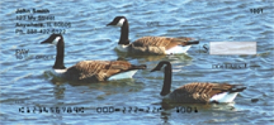 Click on Canada Geese - Canadian Geese  Personal Checks For More Details