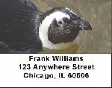 Click on Penguin Labels - Penguins Address Labels For More Details