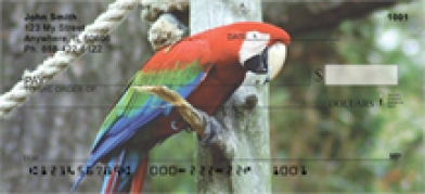 Click on Scarlet Macaw - Parrots  Personal Checks For More Details