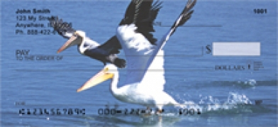 Click on Pelican - Pelicans  Personal Checks For More Details