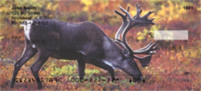 Click on Caribou - Caribou  Personal Checks For More Details