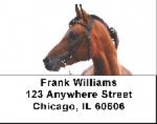 Click on Arabian Horse Address Labels - Arabian Horse Label For More Details