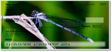 Click on Dragonfly Personal Checks For More Details