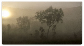 Click on Foggy Day Checkbook Cover For More Details