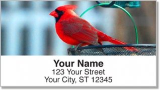 Click on Backyard Bird Address Labels For More Details