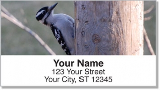 Click on Woodpecker Address Labels For More Details