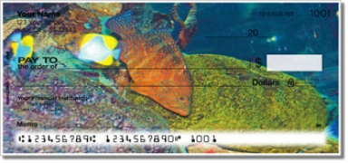 Click on Blue Dot Grouper Personal Checks For More Details