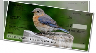 Click on Bluebird Side Tear Personal Checks For More Details