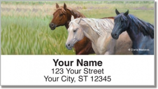 Click on Madaras Horses Address Labels For More Details