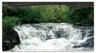 Click on Rushing Rapids Checkbook Cover For More Details
