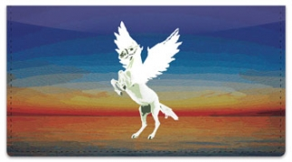 Click on Pegasus Checkbook Cover For More Details