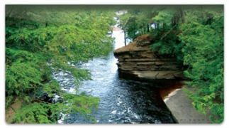 Click on Peaceful River Checkbook Cover For More Details