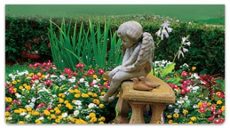 Click on Peaceful Garden Checkbook Cover For More Details