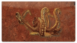 Click on Octopus Checkbook Cover For More Details