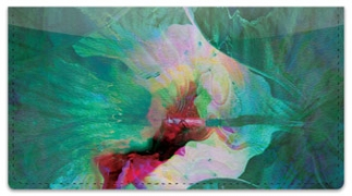 Click on Floral Abstracts 2 Checkbook Cover For More Details