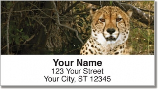Click on African Wildlife Address Labels For More Details