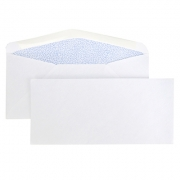 Learn more about #9 Security Envelope, 3 7/8'' x 8 7/8''