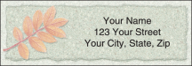 Click on Autumn Leaf Address Labels - Set of 210 For More Details