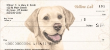 Click on Yellow Lab Dog Personal Checks For More Details