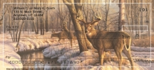 Click on Winter Calm Deer Personal Checks For More Details