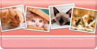 Click on Rescued is Something to Purr About Checkbook Cover For More Details