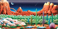 Click on Desert Nights Checkbook Cover For More Details