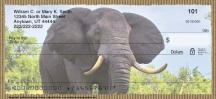 Click on Elephants Checks For More Details