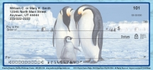 Click on Emperor Penguin Checks For More Details