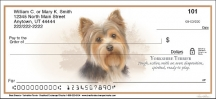 Click on Best Breeds - Yorkshire Terrier Personal Checks For More Details