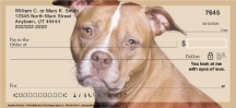 Click on Faithful Friends - Pit Bull Personal Checks For More Details
