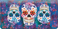 Click on Day of the Dead Checkbook Cover For More Details