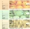 Click on Fruit Designer Deskset Checks For More Details