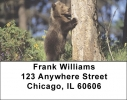 Click on Grizzly Bear Cubs Address Labels For More Details
