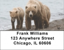 Click on Grizzly Bears in the Wild Address Labels For More Details