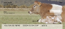 Click on Bonding Baby Calves  Personal Checks For More Details