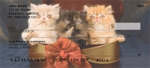 Click on Persian Kittens  Personal Checks For More Details