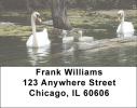 Click on Around the Pond Address Labels For More Details