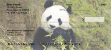 Click on Panda Bears  Personal Checks For More Details